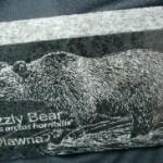 Basalt-Paver-BearS